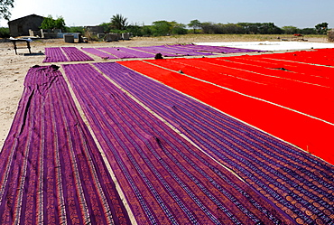 Bolts of brightly coloured dyed and block printed cotton laid out to dry in the sun, Gujarat, India, Asia