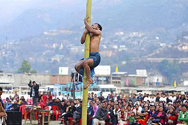 Naga man climbing bamboo pole in contest between tribes at Naga Festival, Senapati, Manipur, India, Asia