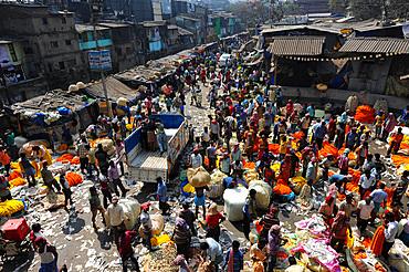Early morning trading of marigold garland ropes, Malik Ghat flower market, Kolkata, West Bengal, India, Asia
