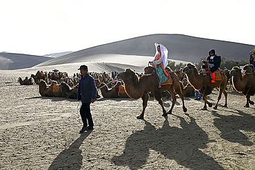 Tourists on camels being led into the Singing Sand Dunes in Dunhuang, Northwest Gansu province, China, Asia