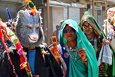 Adivasi tribal men dressed as women and animals to celebrate Holi festival, Kavant, Gujarat, India, Asia - 805-1449
