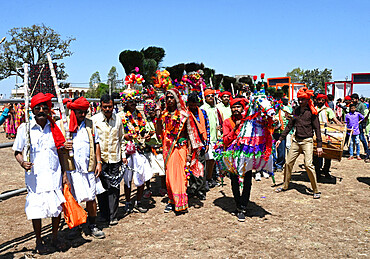 Adivasi tribal men, faces and bodies decorated, wearing ornate headgear, dancing to celebrate Holi festival, Kavant, Gujarat, India, Asia - 805-1451