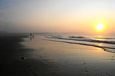 Solitary dog walker at sunrise on the beach at low tide in Walberswick on the east coast of England, Suffolk, England, United Kingdom, Europe - 805-1458