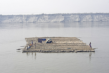 Men guiding large bamboo raft downstream with oars, past sandspit in the Brahmaputra River, Assam, India, Asia