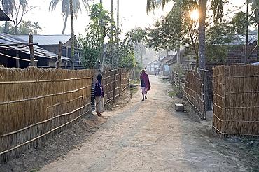 Assamese village, Kurua, very early morning, Brahmaputra, Assam, India, Asia