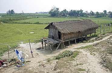 Mishing tribal village house, Majuli Island, largest freshwater riverine island in the world, in the Brahmaputra River, Assam, India, Asia
