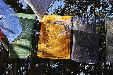 Buddhist prayer flags hanging near the Mahakal Buddhist Monastery, Observatory Hill, Darjeeling, West Bengal, India, Asia