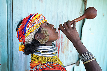 Bonda tribeswoman in traditional costume with beaded cap, large earrings and metal necklaces drinking village alcohol from gourd, Rayagader, Orissa, India, Asia