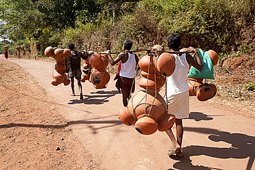 Bonda tribesmen walking to market carrying pots intended for village alcohol production, rural Orissa, India, Asia