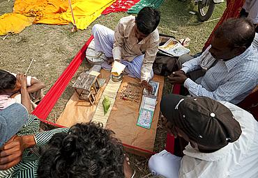 Fortune telling green parakeet picking tarot cards at Sonepur Cattle Fair, Bihar, India, Asia