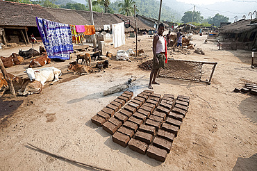 Young man standing in traditional Desia Kondh tribal village street, mud bricks drying in the sun, Bissam Cuttack, Orissa, India, Asia