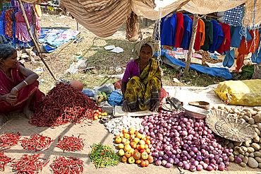 Desia Kondh tribal market vegetable stall, woman selling chillies, tomatoes, onions and potatoes, near Rayagada, Orissa, India, Asia