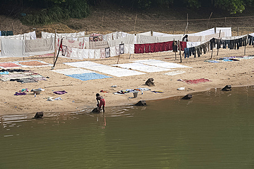 Dhobi wallah washing laundry in the river with neatly arranged washing drying on the sandy riverbank, Raghurajpur, Orissa, India, Asia