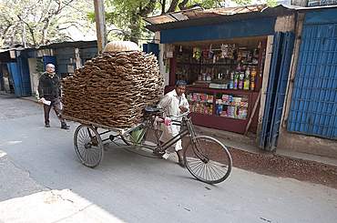 Man wheeling cycle rickshaw laden with dung pats for use as domestic fuel, Hugli village, West Bengal, India, Asia