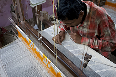 Weaver working in unique Ramdani method, using both domestic loom and needles, weaving undyed cotton lawn, Kalna, West Bengal, India, Asia