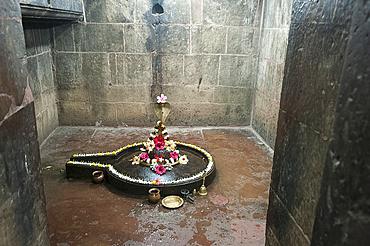 Shiva lingum and yoni, symbol of goddess Shakti, decorated with hibiscus flowers, Muktesvara Deula temple, 970AD, Bhubaneshwar, Orissa, India, Asia