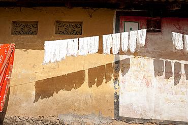 Skeins of washed spun raw silk hanging to dry along a village house wall, Naupatana village, Orissa, India, Asia
