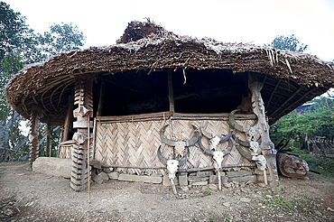 Village Gurung (boys dormitory) decorated with carved wooden pillars and animal skulls, where tribal boys are trained to manhood, Ngangting, Nagaland, India, Asia