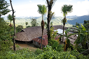 Longwha village houses with both tin and palm thatched roofs, rural Nagaland, India, Asia