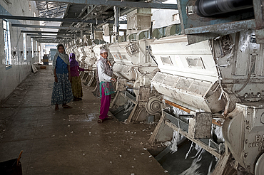 Female factory workers managing machinery in cotton processing factory, Rajkot district, Gujarat, India, Asia