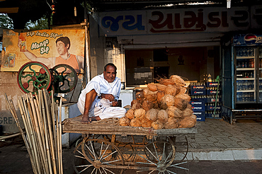 Relaxed man in white dhoti selling coconut milk and sugar cane juice from simple wooden cart, Rajkot district, Gujarat, India, Asia