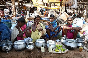 Mali tribeswomen with gold noserings selling yoghourt from metal pots in Mali weekly tribal market, Guneipada, Orissa (Odisha), India, Asia