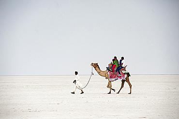 Indian family enjoying a camel ride in the white desert, a seasonal salt marsh in the Great Rann of Kutch, Kutch, Gujarat, India, Asia
