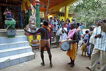 Shaman in altered state of consciousness with Shamanic drummer and cymbal, performing problem-solving ritual in Hindu temple, Kurkuri, Odisha, India, Asia