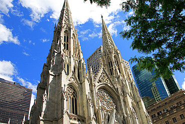 St. Patrick's Cathedral, 5th Avenue, Midtown, Manhattan, New York City, New York, USA