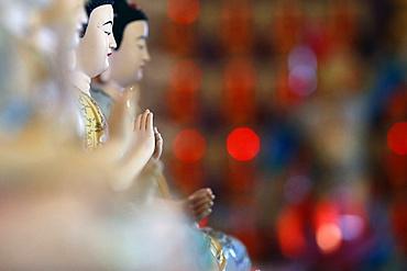 Siddhartha Gautama, the Shakyamuni Buddha, Huynh Dao Buddhist Temple, Chau Doc, Vietnam, Indochina, Southeast Asia, Asia