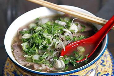 Vietnamese Spicy Sliced Beef and noodle Pho Bo Soup, France, Europe