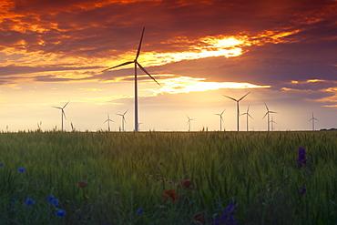 Wind turbines at sunset, Kavarna Wind Farm, Kavarna, Bulgaria, Europe