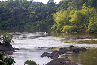 Fishermen on the Approuague River, French Guiana, South America