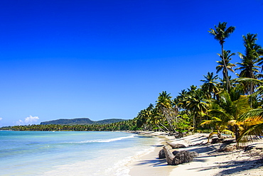 Playa Grande, Las Galeras, Semana peninsula, Dominican Republic, West Indies, Caribbean, Central America