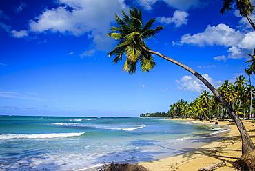 Casa Blanca Beach, Las Terrenas, Dominican Republic, West Indies, Caribbean, Central America