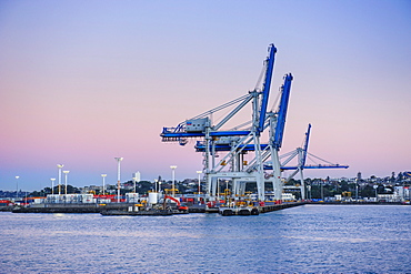 Wharf in the harbour of Auckland, North Island, New Zealand, Pacific