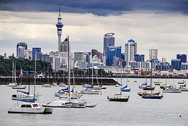 The harbour of Auckland with the skyline in the background, Auckland, North Island, New Zealand, Pacific