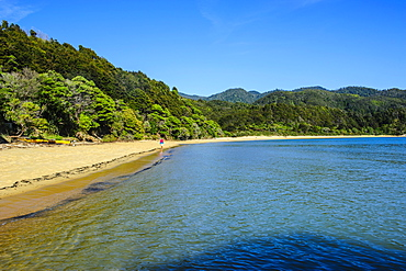 Long sandy beach, Abel Tasman National Park, South Island, New Zealand, Pacific