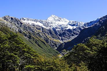 Otira Gorge road, Arthur's Pass, South Island, New Zealand, Pacific
