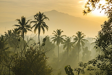 Early morning view of the countryside surrounding the temple complex of Borobodur, UNESCO World Heritage Site, Java, Indonesia, Southeast Asia, Asia