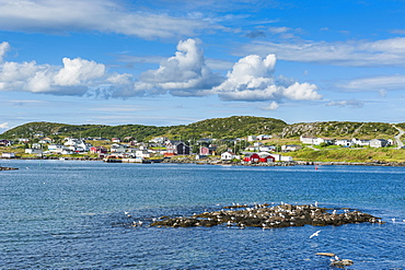 Marguerite Bay in St. Anthony, Newfoundland, Canada, North America