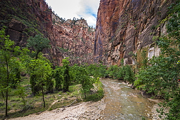 The towering cliffs of the Narrows in Zion National Park, Utah, United States of America, North America