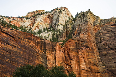 The towering cliffs of the Zion National Park, Utah, United States of America, North America