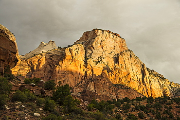 Early morning sunlight shining on the towering cliffs of the Zion National Park, Utah, United States of America, North America