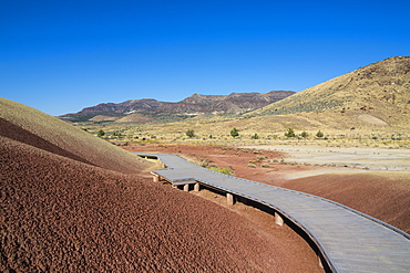 Multicoloured strata hill in the Painted Hills unit in the John Day Fossil Beds National Monument, Oregon, United States of America, North America