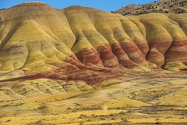 Multicoloured strata in the Painted Hills unit in the John Day Fossil Beds National Monument, Oregon, United States of America, North America