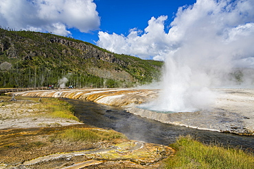Cliff Geyser erupting in the Black Sand Basin, Yellowstone National Park, UNESCO World Heritage Site, Wyoming, United States of America, North America