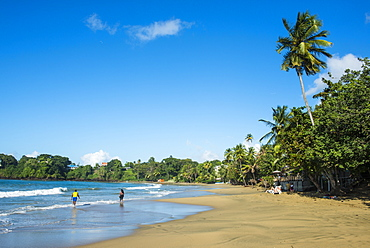 The beach of Stonehaven Bay, Tobago, Trinidad and Tobago, West Indies, Caribbean, Central America
