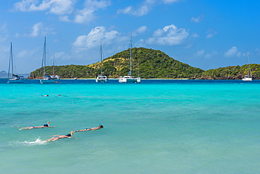 Tourists snorkeling in the turquoise waters of the Tobago Cays, The Grenadines, St. Vincent and the Grenadines, Windward Islands, West Indies, Caribbean, Central America
