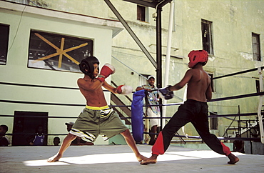 Boxing match between young boys at boxing club, Havana, Cuba, West Indies, Central America